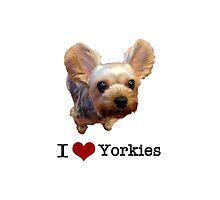 I Heart Yorkies by Dayshop