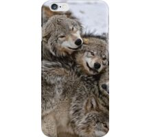 Playful Wolf Pack iPhone Case/Skin