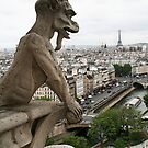 Gargoyle Paris by Elodie