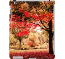 Red Maple in Larz Anderson park. iPad Case/Skin