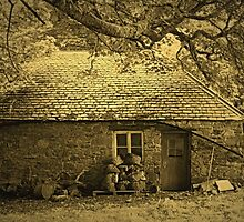 The Woodcutters Cottage by Bill Lighterness