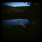 Holga madness......little clouds at dawn in daniland by Juilee  Pryor