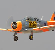 North American T6/Harvard #7306 on Finals by Paul Lindenberg