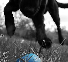 Playing ball by hettie