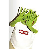 Kermit for Supreme Media Cases, Pillows, and More. Photographic Print