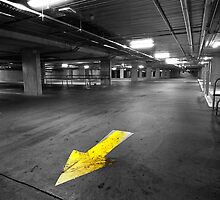Yellow by Andre Gascoigne