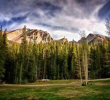 Meadow Above the Basin by Kathy Weaver