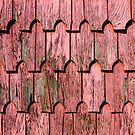 Red shingle by Dave Hare