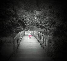 Lonely    ...bridge by Redrose10