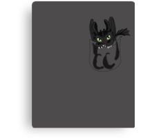 Toothless in your pocket  Canvas Print