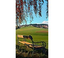 Bench under the tree | landscape photography Photographic Print