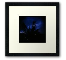 Holga madness......little palm and stormy sky Framed Print