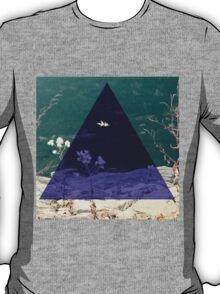 In a Triangle of Color T-Shirt