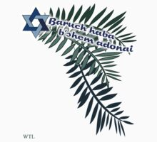 Baruch haba b'shem adonai 2 by picketty