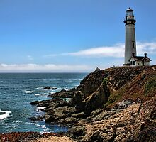 Pigeon Point Lighthouse by Judy Vincent