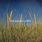 This Beautiful Earth by Mark Hayward