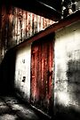 The Red Door by Karri Klawiter