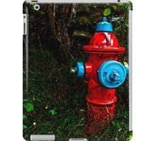 Lonely Firehydrant - www.jbjon.com iPad Case/Skin