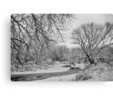 Winter Creek in Black and White Canvas Print