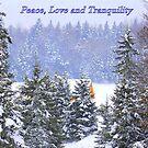 Canadian Winter Scene by vette