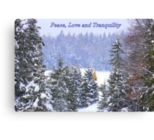 Canadian Winter Scene Canvas Print