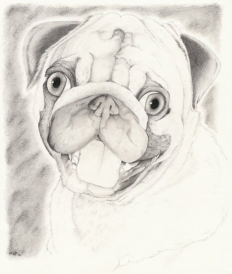 Puppy Grin by MaKayla Songer