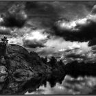 Storm in the Dells Monochrome by Wayne King