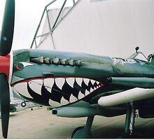 Its got teeth  by Richard  Willett