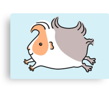 Leaping Guinea-pig - Apricot and Grey Canvas Print