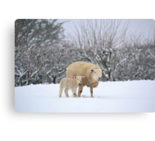 Mum and Baby in the snow Canvas Print