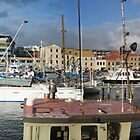 Hobart Fishing Boats by Paul Coussa