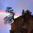 A Rainbow Somewhere by CarolM