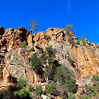 Pinnacles National Park by Barbara  Brown