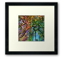 Summer Wine 9 Framed Print