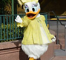 Disney Daisy Duck Spring Time Daisy  by notheothereye