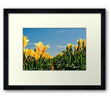 Certain Angles Framed Print