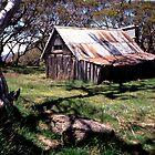 Wallace's Mountain Hut, Australia by Speedy
