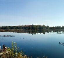 Morning Lake by Mary  Lane