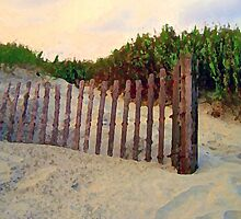 Dune Fence by suzannem73