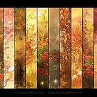 Autumn Aura by Stephanie Rachel Seely