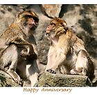 Happy Anniversary by Linda More
