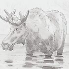 Moose Drawing by MikeJory