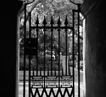 College of Charleston Gate View by Benjamin Padgett