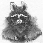 Curious Racoon by bronspst