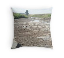 Dry river bed  Throw Pillow