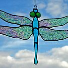 "Dragonfly ""Iridescent wings"" by Neil Witney"