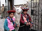 Alpaca Girls by Jonathan Bartlett