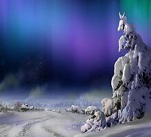 Northern Lights by Igor Zenin