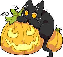 Pumpkin & Cat by Zinge