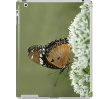 "Miss butterfly... ""Danaus chrysippus (African monarch)"" Free State, South Africa iPad Case/Skin"